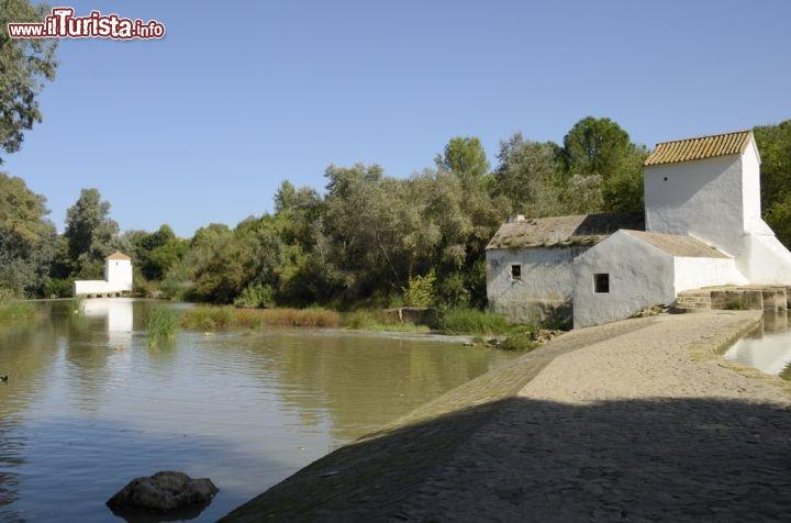 Le foto di cosa vedere e visitare a Alcala de Guadaira