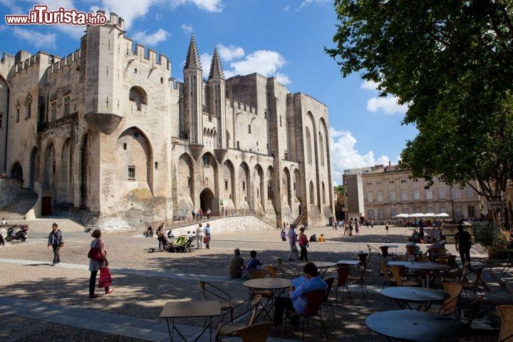 Le foto di cosa vedere e visitare a Avignone