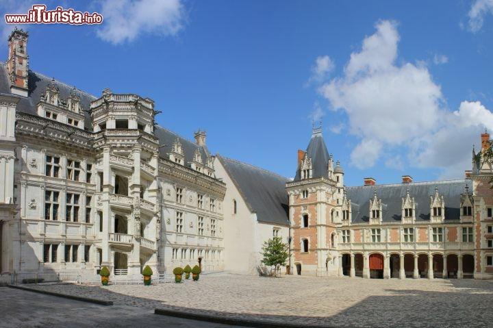 Le foto di cosa vedere e visitare a Blois
