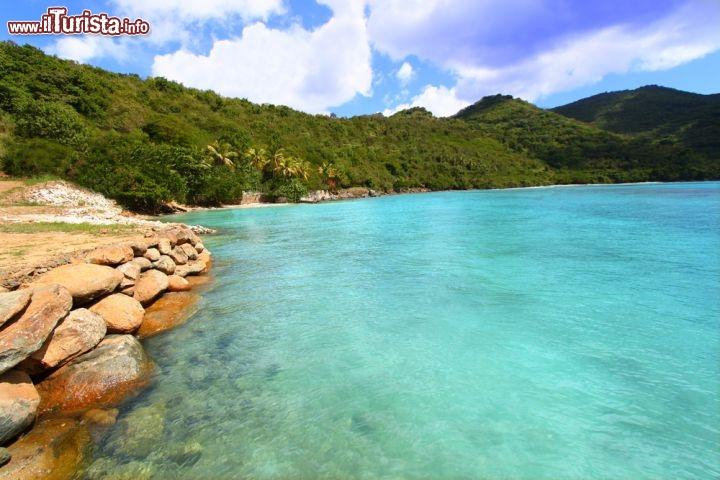 Le foto di cosa vedere e visitare a Tortola