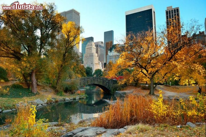 Autunno A Central Park Di New York Stati Uniti