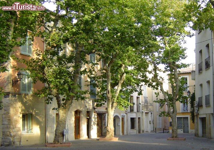 Le foto di cosa vedere e visitare a Martigues