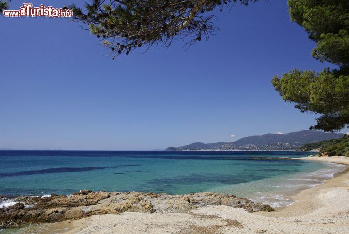 Le foto di cosa vedere e visitare a Rayol-Canadel-sur-Mer