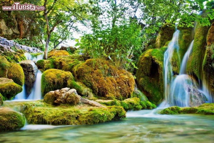 Le foto di cosa vedere e visitare a Plitvice