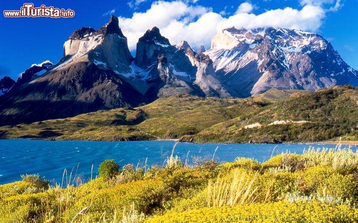 Le foto di cosa vedere e visitare a Torres del Paine