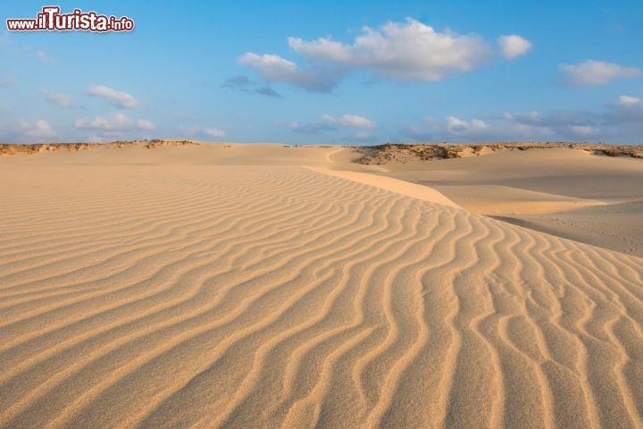 Dune di sabbia il deserto di boa foto boa vista - Immagini di spongebob e sabbia ...