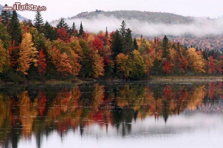 Le foto di cosa vedere e visitare a New Hampshire