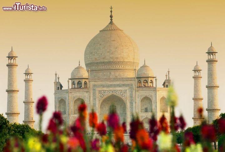Le foto di cosa vedere e visitare a Agra