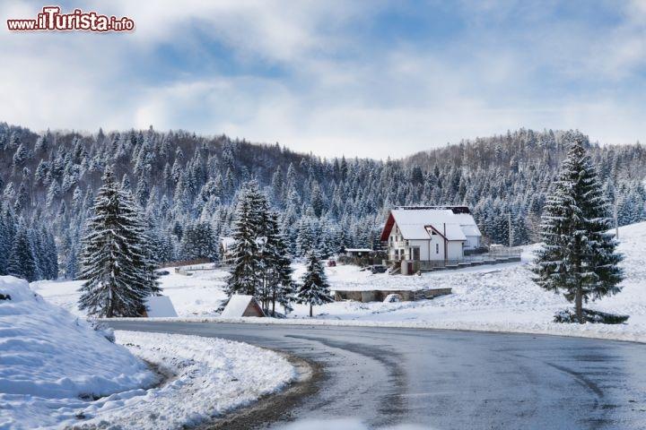 Paesaggio invernale a brasov romania una soffice for Disegni paesaggio invernale