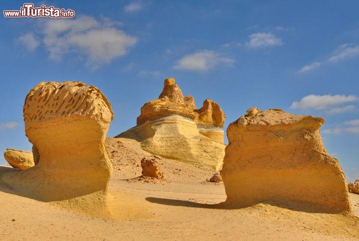 Le foto di cosa vedere e visitare a Wadi al-Hitan