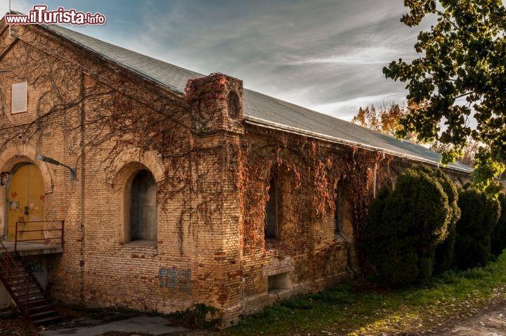 Le foto di cosa vedere e visitare a Timisoara