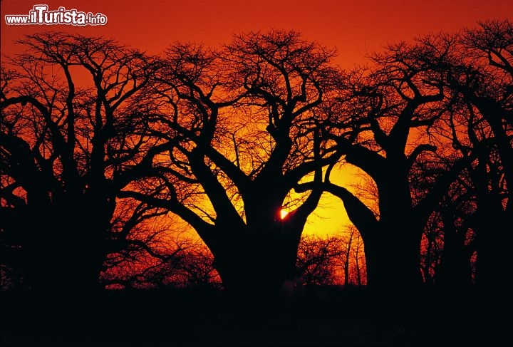 Immagine Infuocato tramonto in Sudafrica - Fonte South African Tourism