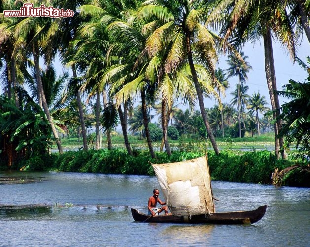 Immagine Kerala le lagune backwaters India - Foto di Giulio Badini