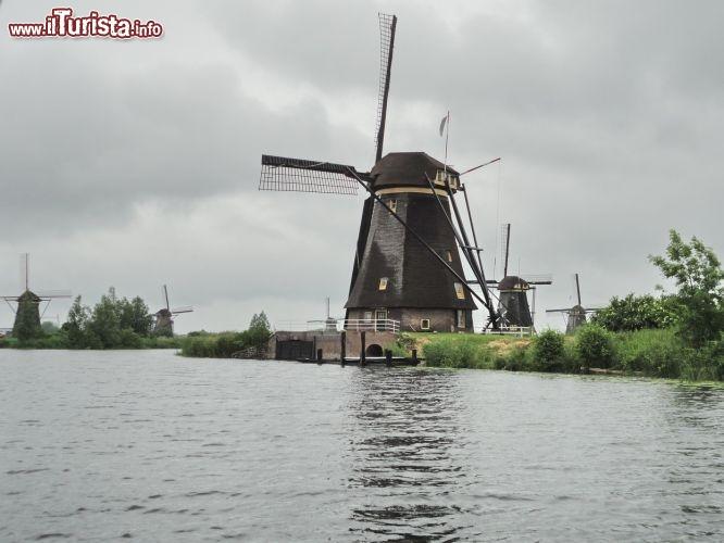 Le foto di cosa vedere e visitare a Kinderdijk