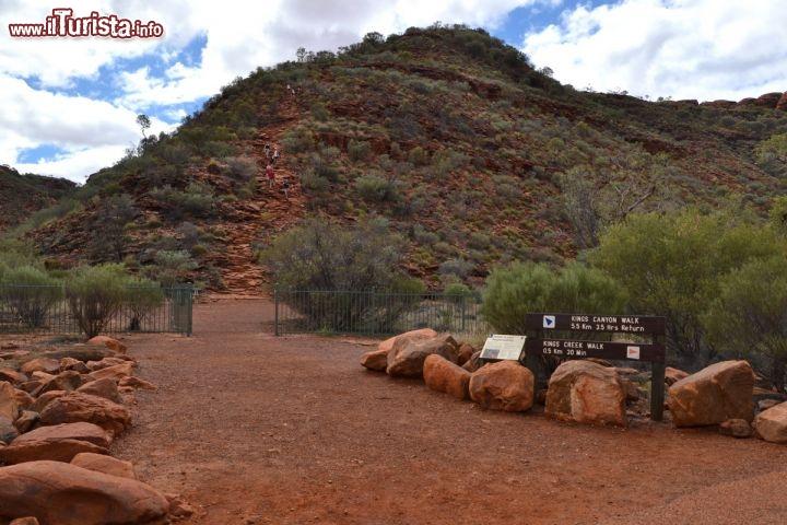 Le foto di cosa vedere e visitare a Kings Canyon