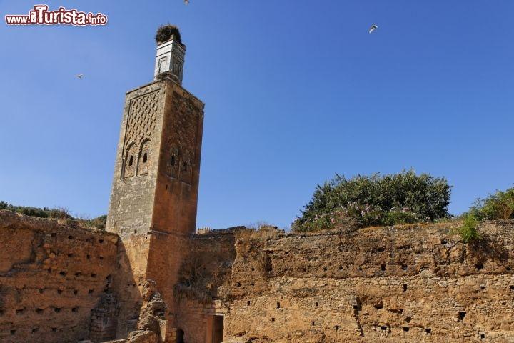 Le foto di cosa vedere e visitare a Rabat