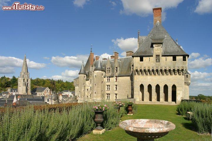 Le foto di cosa vedere e visitare a Langeais
