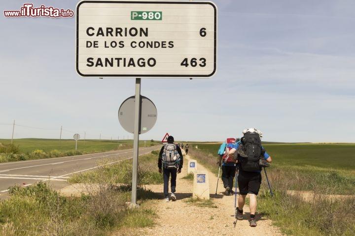Le foto di cosa vedere e visitare a León