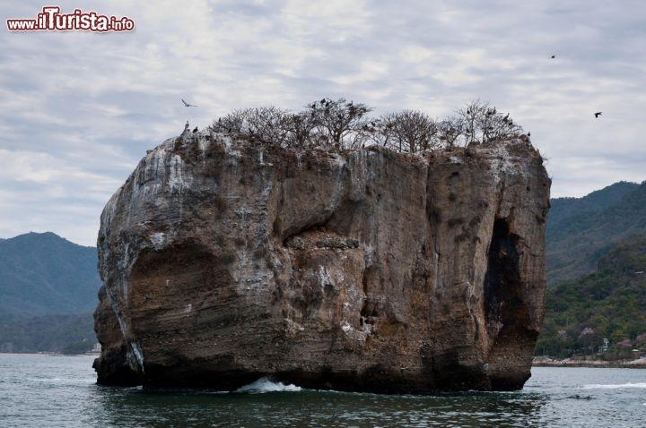Le foto di cosa vedere e visitare a Puerto Vallarta