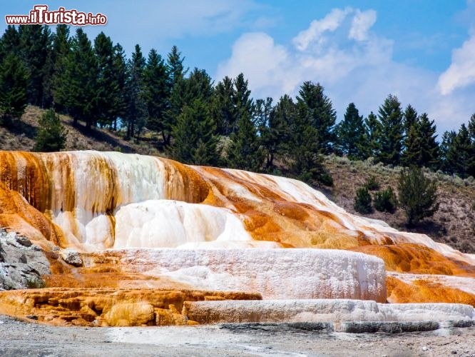 Immagine Mammoth Hot Springs: nella parte nord dello Yellowstone National Park si trovano questi grossi depositi colorati di travertino - © Kenneth Keifer / Shutterstock.com