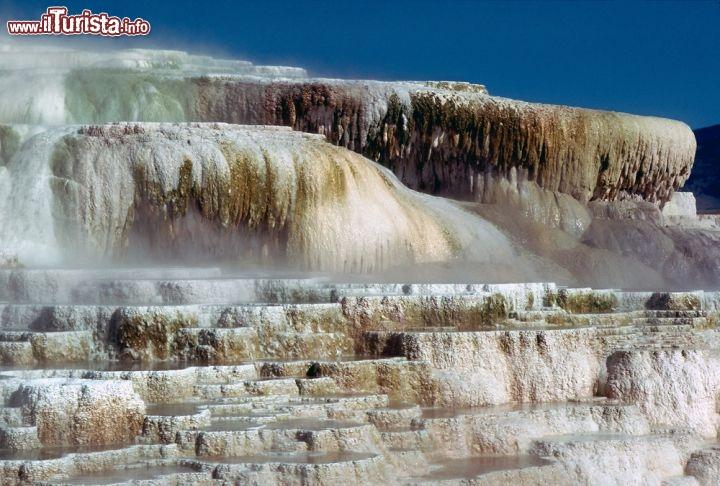Il minerva terrace si trova nella zona nord occidentale for Minerva terrace yellowstone