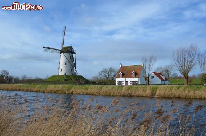 how to get from amsterdam to bruges