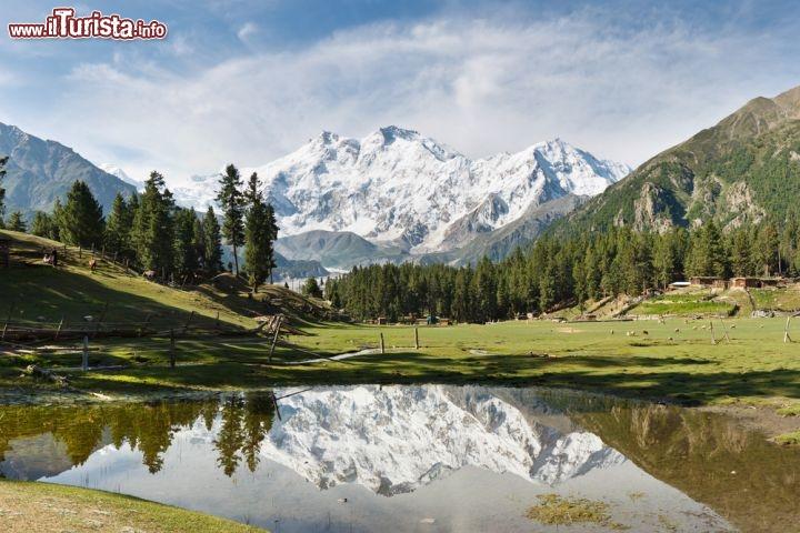 Le foto di cosa vedere e visitare a Pakistan