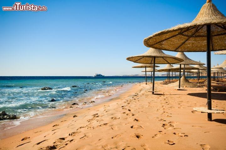 Ombrelloni sull spiaggia di sharm el sheikh in foto sharm el sheikh for Puglia garden city ny