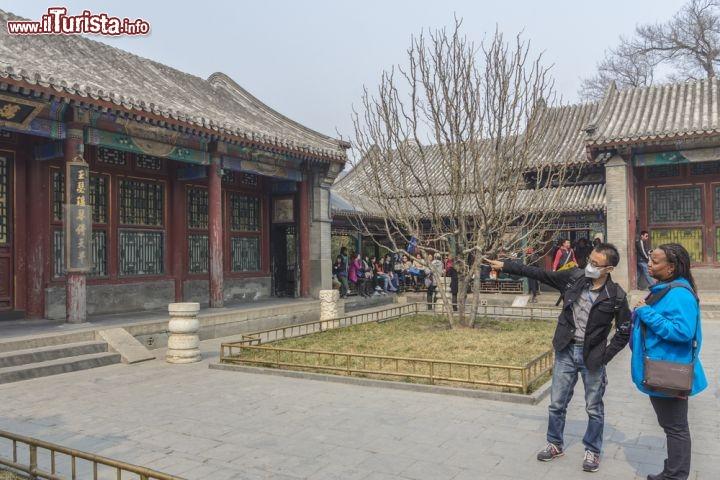 Le foto di cosa vedere e visitare a Pechino