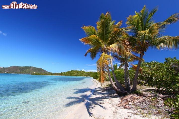 Palme sulla spiaggia questo mare tropicale foto for Disegni di casa sulla spiaggia tropicale