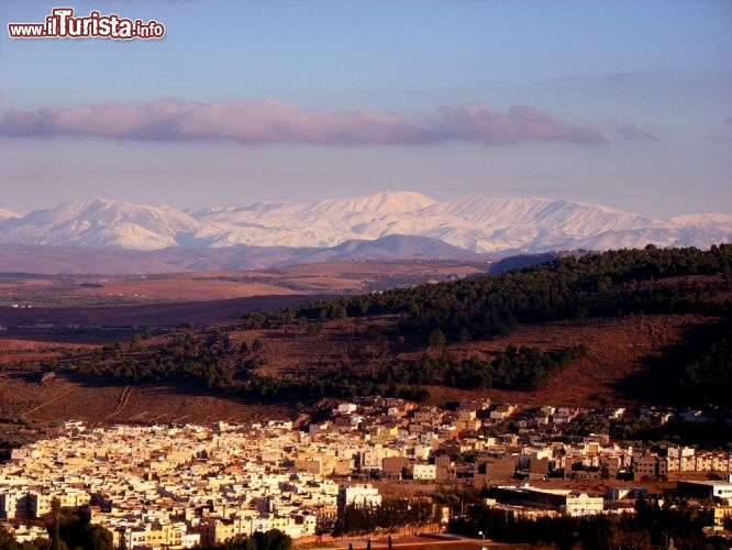 Le foto di cosa vedere e visitare a Ifrane