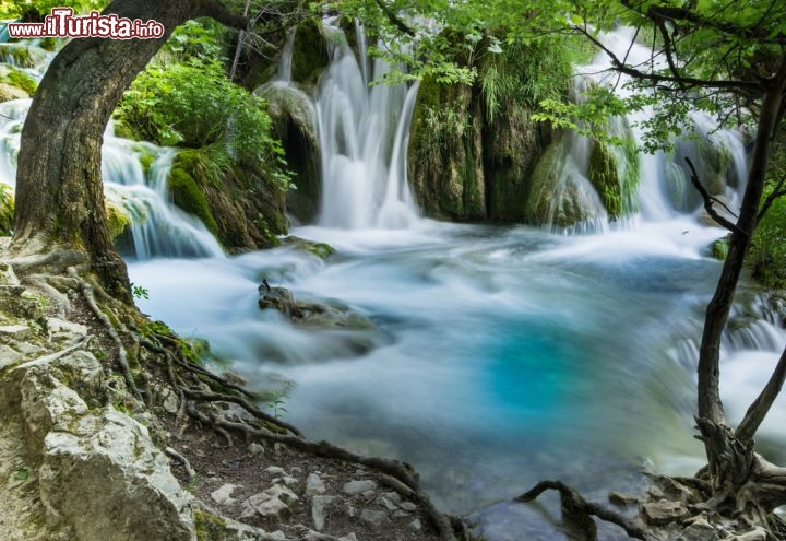 Una cascata del Parco Nazionale di Plitvice, ...  Foto Plitvice