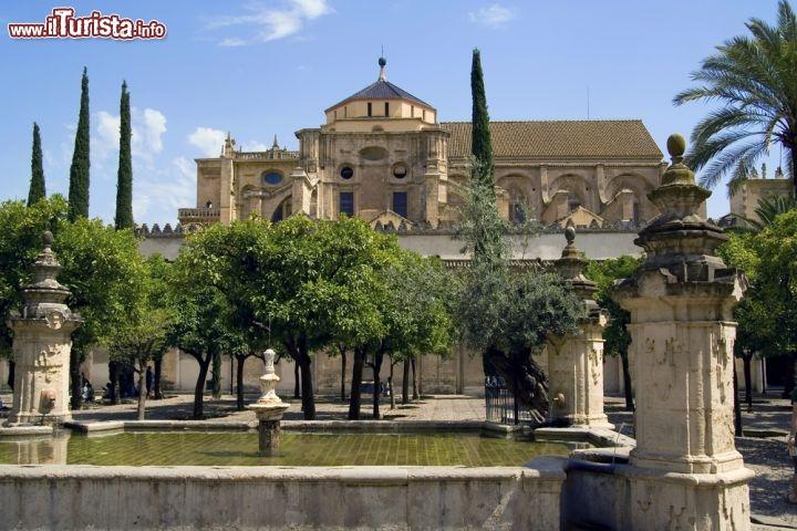 Patio de los naranjos siamo nella celebre mezquita foto cordova for Puglia garden city ny