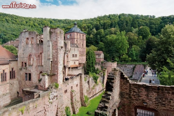 Immagine Rovine del castello di Heidelberg in Germania - ©German National Tourist Board