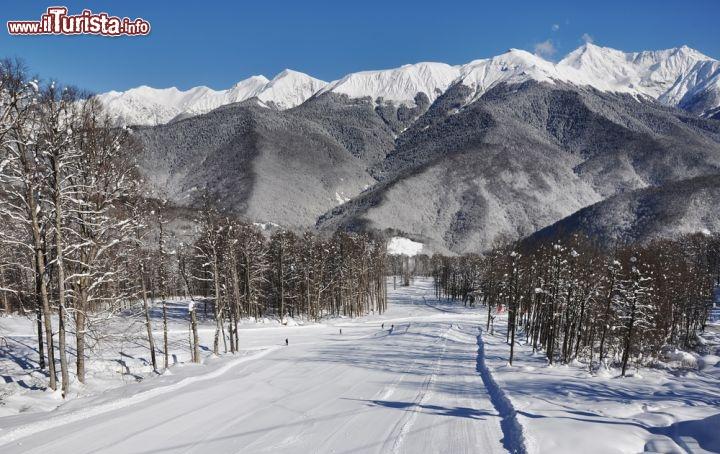 Le foto di cosa vedere e visitare a Sochi