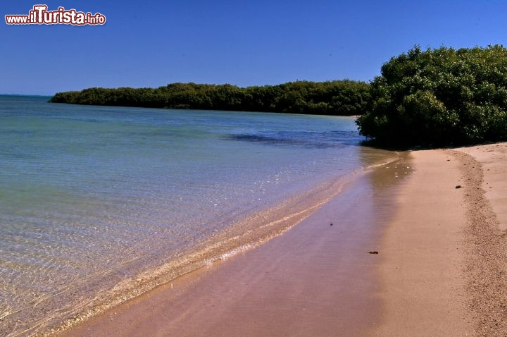 Immagine Spiaggia Mangrove bay Cape Range National Park Exmouth Australia
