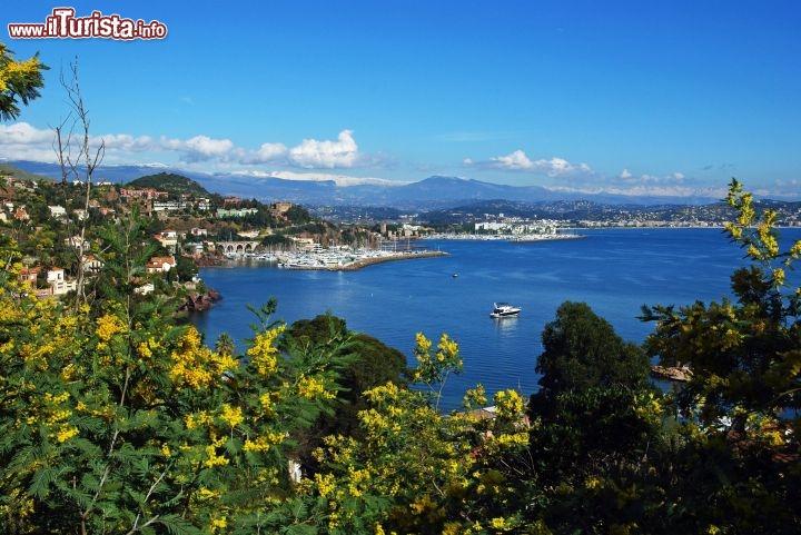 Le foto di cosa vedere e visitare a Mandelieu-La Napoule