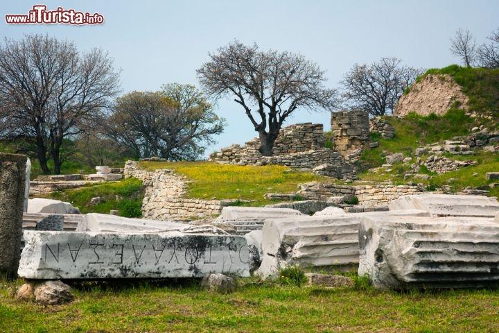 Le foto di cosa vedere e visitare a Troia