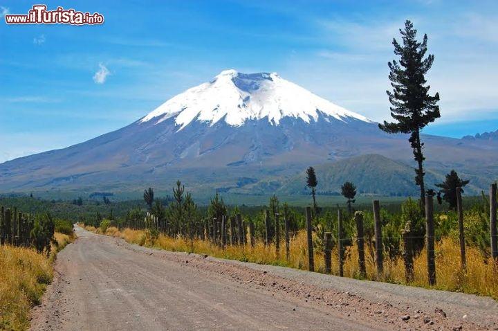 Le foto di cosa vedere e visitare a Ecuador