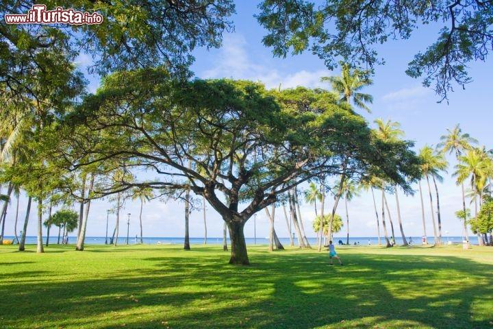 Le foto di cosa vedere e visitare a Honolulu