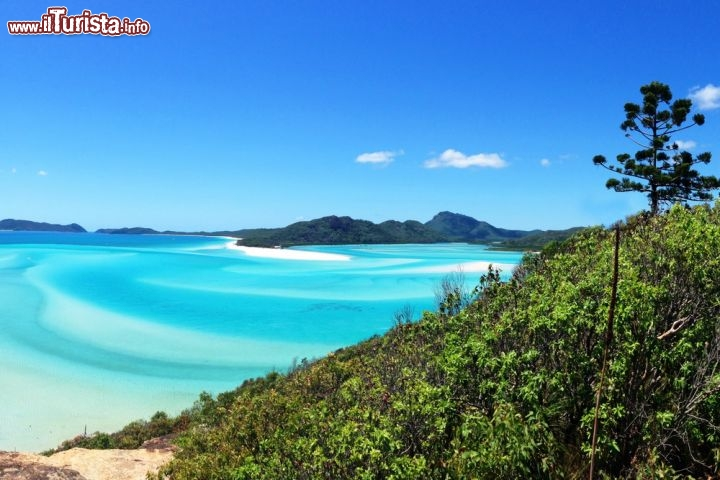 Le foto di cosa vedere e visitare a Whitsunday Islands