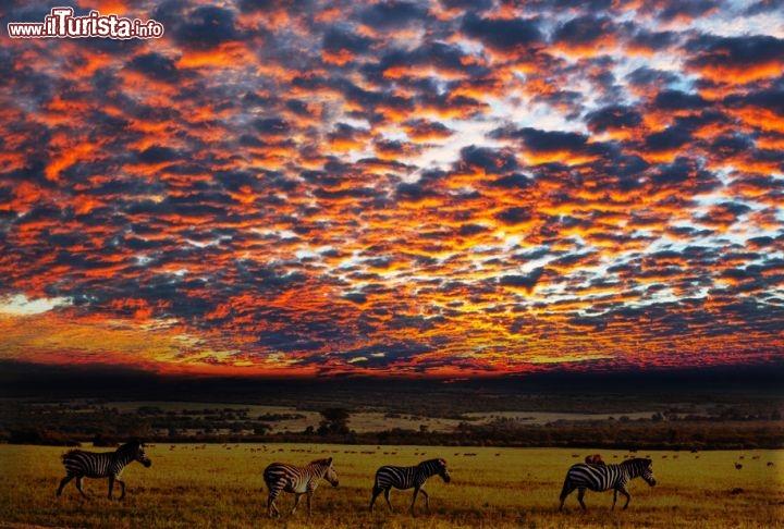 Un Magnifico Tramonto Nel Parco Nazionale Del Foto Serengeti