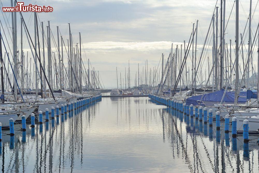 Le foto di cosa vedere e visitare a Marina di Ravenna