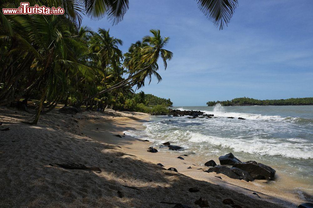 Le foto di cosa vedere e visitare a Cayenne