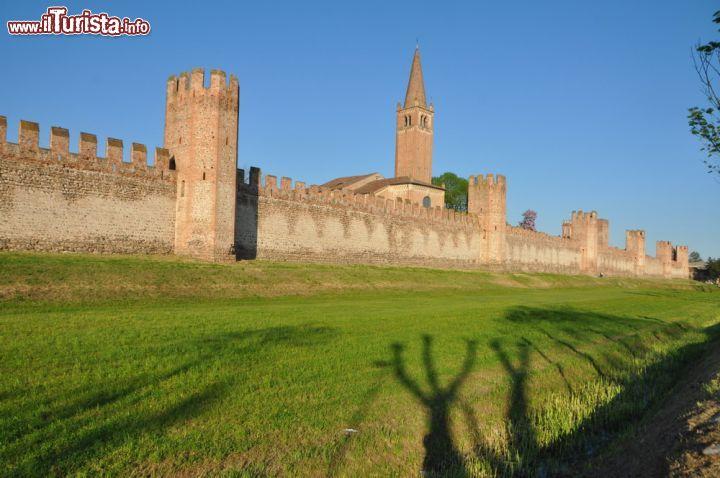 Le foto di cosa vedere e visitare a Montagnana