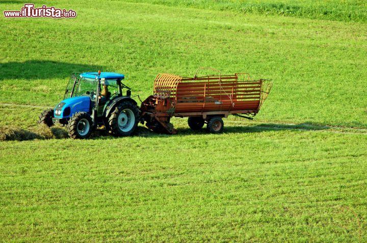 Lavori nelle campagne di bagolino durante l 39 estate - Immagini da colorare durante l estate ...