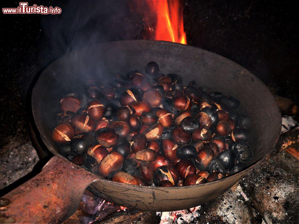 Festa del Marrone - Sagra della Castagna Campiglia d'Orcia