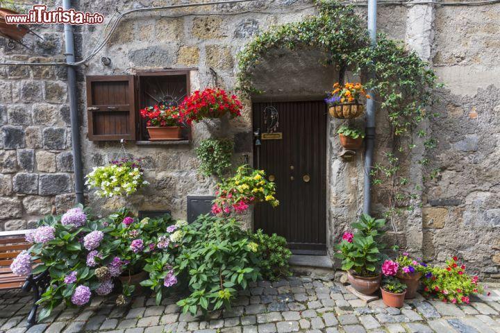 Casa tradizionale a bolsena italia la facciata for La casa toscana tradizionale