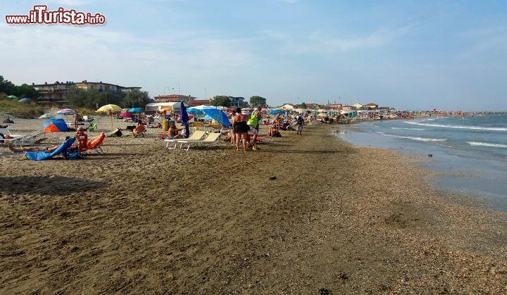 Bagni Di Casalborsetti : Casalborsetti ravenna la spiaggia dei cani foto casalborsetti