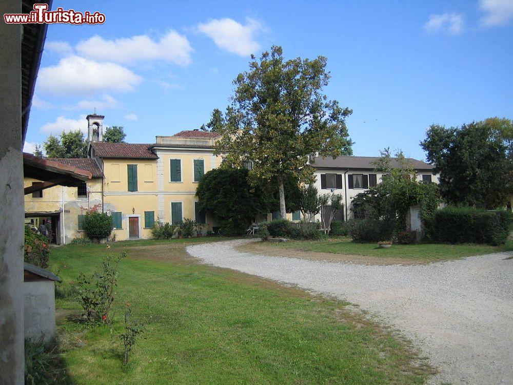 Le foto di cosa vedere e visitare a Carpiano
